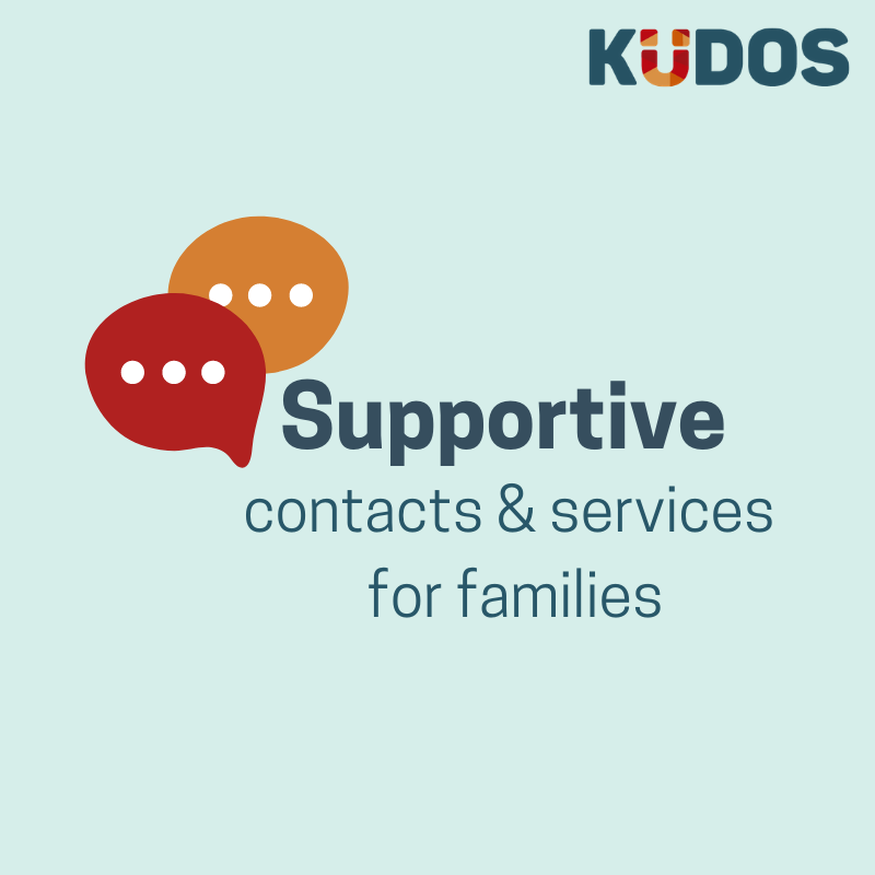 Supportive contacts and services for families
